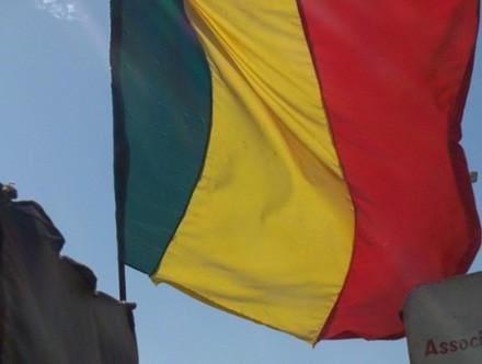 Malidenw bɛ Mali Samatasɛgɛw kɔ Afiriki kupu,  Angola san 2010 na.