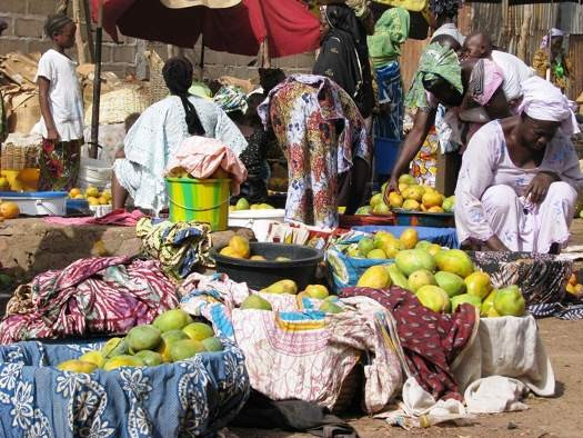 Les mangues constituent une source de revenu au Mali