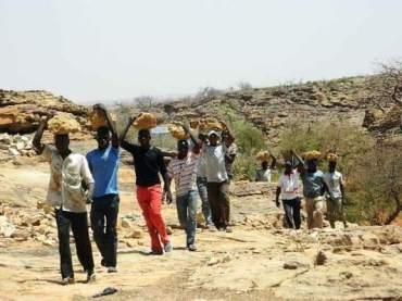 Les jeunes du village lors d'un travail collectif et traditionnel.